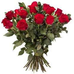 Miłosne róże