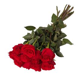 11 róż czerwonych