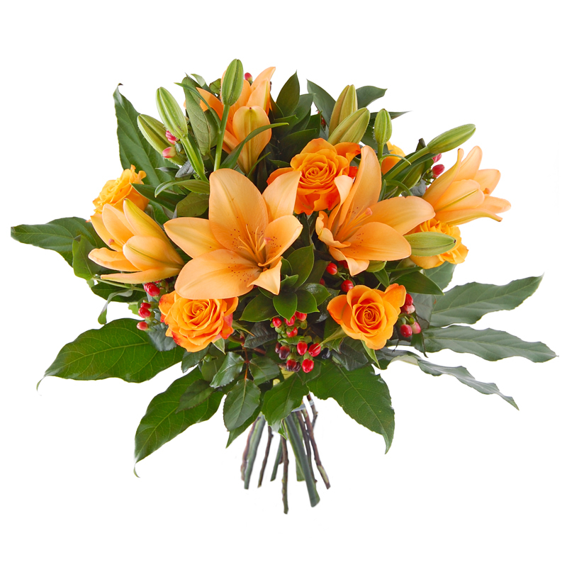 Jesienne kwiaty Kwiaty