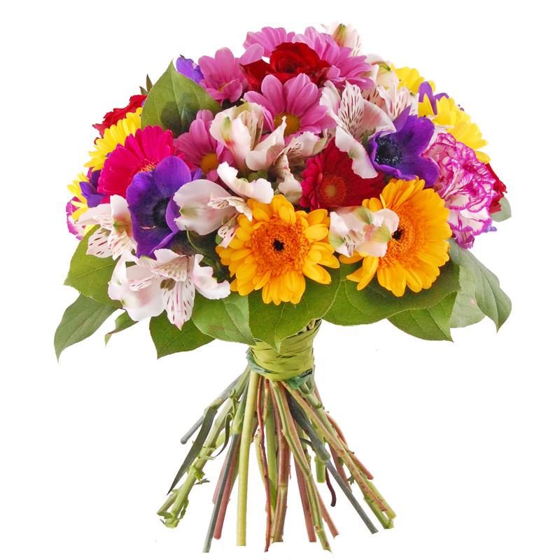 Bukiet Eksplozja Kolorów Kwiaty
