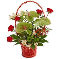 Anturia, róże i alstromerie w koszyku Kwiaty